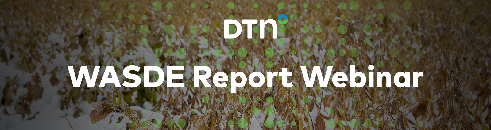 WASDE Report Webinar